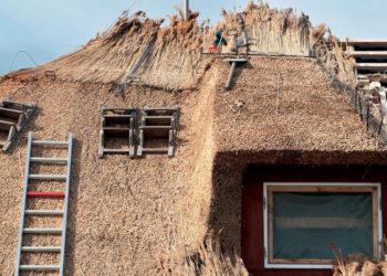 Mach eine Ausbildung bei Reetdachdeckerei Finke