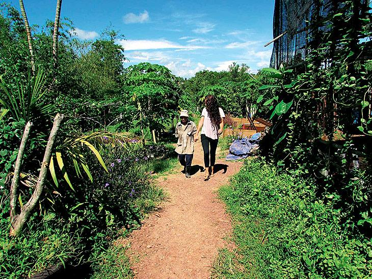 Zwei Menschen gehen im Freien einen von Grünpflanzen umsäumten Weg entlang.