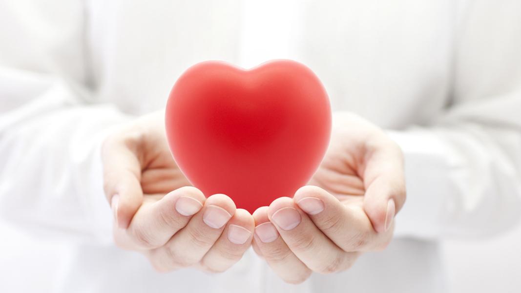 Eine Person hält ein stilisiertes Herz in beiden händen.