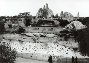 HAG_Afrika-Panorama_1920