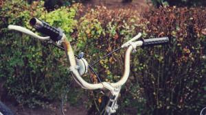 Ein rostiger Fahrradlenker, dahinter eine Hecke.