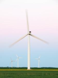 Ein Windrad auf einem grünen Feld.