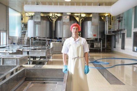 """""""Pikante"""" Ausbildung von Milchtechnologen in der Käserei Holtsee"""