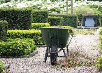 Ausbildung bei Gartenideen Stegemann
