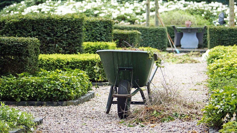 Ausbildung zum/r Gärtner/in bei der Firma GartenSchön in Husum