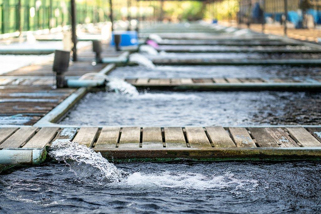 Ausbildung zur Fachkraft für Abwassertechnik bei der Stadt Kiel